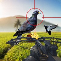 Spy Pigeon Bowhunting 3D