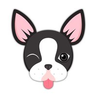 Boston Bull Terrier Keyboard