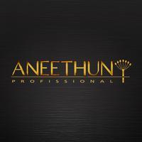 Aneethun