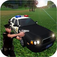 Police Criminal Mission