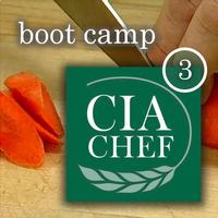 CIA Boot Camp 3