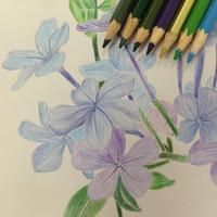 铅笔画教程 - 学习铅笔画