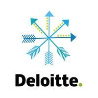 Deloitte Publikationen