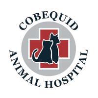 Cobequid AH