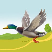A Duck Hunter Classic