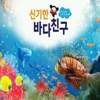 신기한 바다친구 - ARnJoy AR북 시리즈