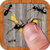 Ant Smasher