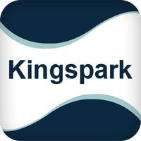 KingSpark 金士達
