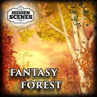 Hidden Scenes - Fantasy Forest