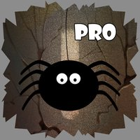 Spider Cave Pro