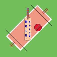 Cricket Fever Challenge: Arcade Timekiller