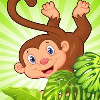 Rainforest Monkey Fall Craze: Jaguar Grab Jungle Blitz