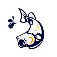 Hibiscus Coast Boating Club