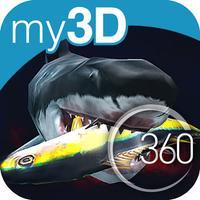 my3D 360° SHARKS