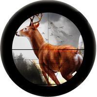 Hunting : Deer Hunting 2016