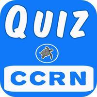 CCRN Practice Exam