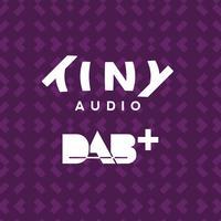 TinyDAB