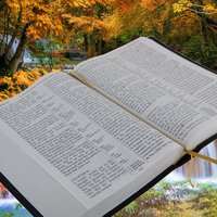Track Your Bible Reading