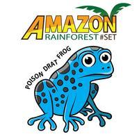 Word Play: Amazon Rainforest