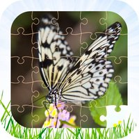 Butterfly Jigsaw Puzzle Kid Game