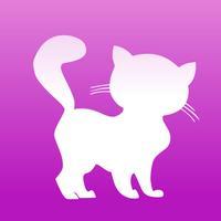 Wallfive HD Wallpapers - My Little Kittens