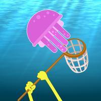 Jellyfish Hunting