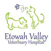 Etowah Valley Vet