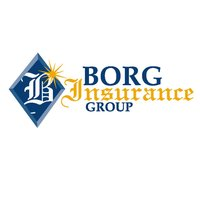 Borg Insurance Group Online