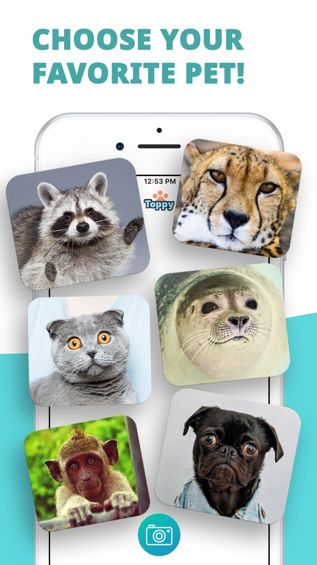 Toppy - My Talking Animals App for iPhone - Free Download
