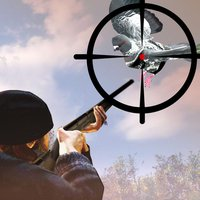 Kill Spy Pigeon Sniper Shooter Challenge