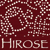 Hirose Dyeworks01 - colors & patterns