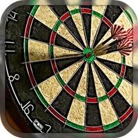 Darts Pro Cup