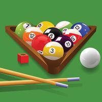 Billiards 8 Ball , Pool Cue Sports Champion