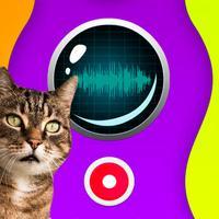 Cat Translator Recorder