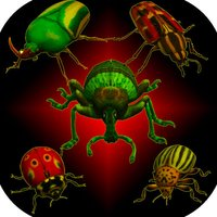 Real Bugs: Beetle Smasher 3D