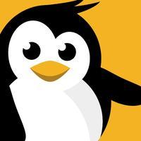 Dataplicity - Terminal for Pi