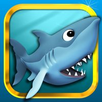 Funny Shark Game