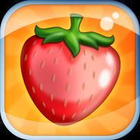Fruit Memory FX3X