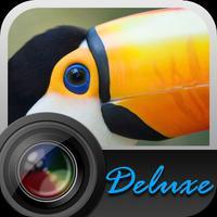 Aisu Deluxe Camera