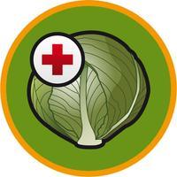 Brassica diseases