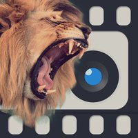 WoCam Animal Face - Recording your camu video and replace faces with animals