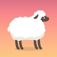 Over the Clouds : Sheep