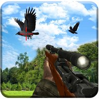 Crow hunting Adventure