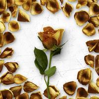 Flower Greetings Gold Roses