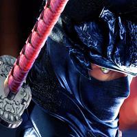 Ninja Fighter Legends. The Shadow Street Fight