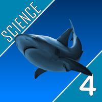 Science Quest  - Fourth Grade Quiz