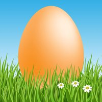 Eggy Hunt