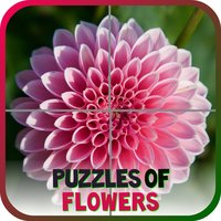 Puzzles of Flowers Free