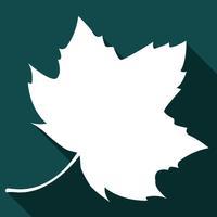 Mclean Mortgage Mobile App