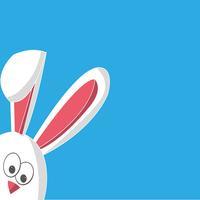 Bunny N Rabbit Stickers